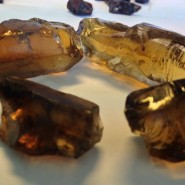 Rough Citrines From Zambia